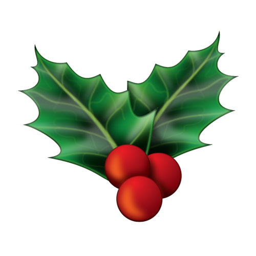 Image result for mistletoe emoji